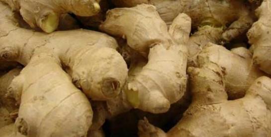 Le gingembre pour lutter contre les nausées pendant la grossesse