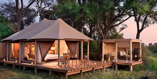 Découvrez le parc national du Kruger: la plus grande réserve animalière d`Afrique du Sud