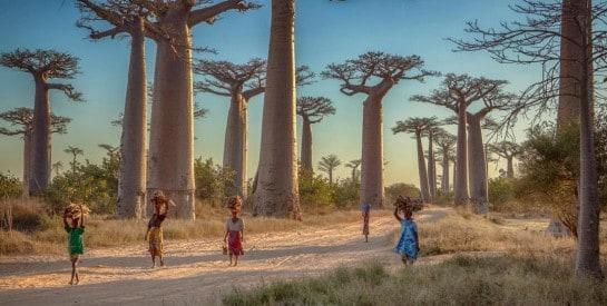 Séjour à Madagascar : 20 lieux à voir pour un beau voyage