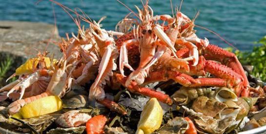 L`art et la manière de manger ses fruits de mer