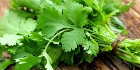 2 feuilles pour combattre efficacement la mauvaise odeur intime