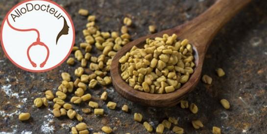 Les graines de fenugrec peuvent-elles aider à perdre du poids?