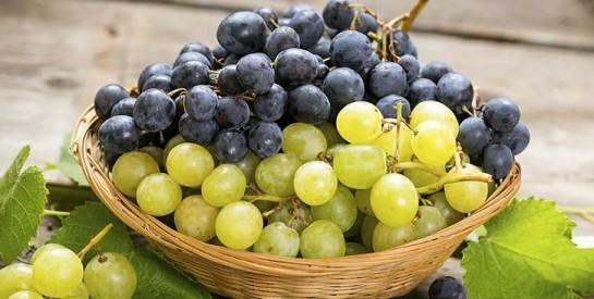 Une cure de raisins pour désintoxiquer le corps