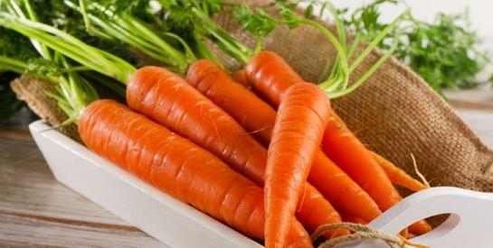 10 aliments riches en collagène pour une peau jeune plus longtemps