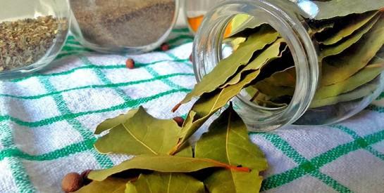 Contre le diabète, essayez ce remède aux feuilles de laurier
