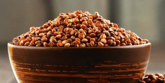 Le sorgho, cinquième céréale mondiale, regorge de bienfaits!