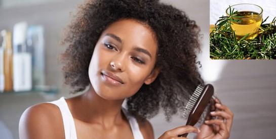 Le thym: une merveille pour vos cheveux