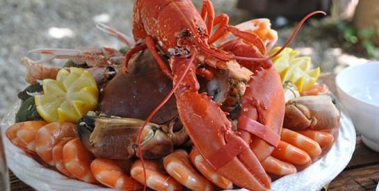 Allergie alimentaire : attention aux fruits de mer