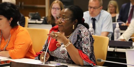 Réseau des Femmes Élues Locales d'Afrique (REFELA) : Macoura Dao, Maire de Foumbolo, nouvelle Présidente
