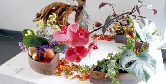 Pari gagné pour la 2è édition du Festival international des fleurs et de la décoration d'Abidjan