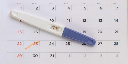 Combien de temps faut-il en moyenne pour tomber enceinte?