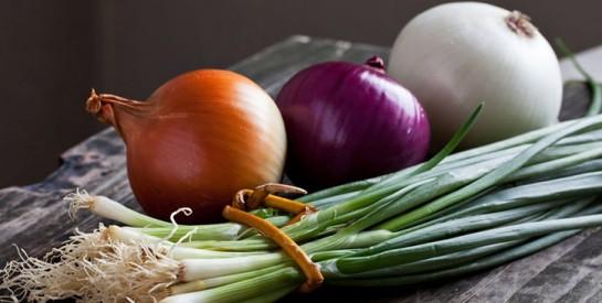 Voici les précautions et ces aliments qui aident à combattre le cancer!