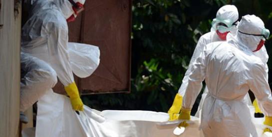 En Ouganda, un mort de Marburg, virus «cousin» d'Ebola