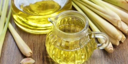 La citronnelle: remède contre les troubles digestifs et les troubles de sommeil