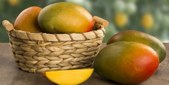 La mangue africaine : un fruit aux propriétés brûle-graisses