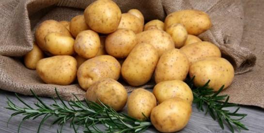 Top 7 des aliments non périssables à avoir dans son garde-manger