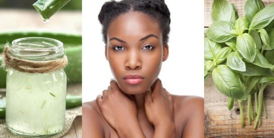 2 plantes efficaces pour calmer les démangeaisons sans agresser la peau