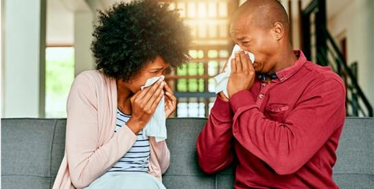 Le ginseng votre allié contre la grippe
