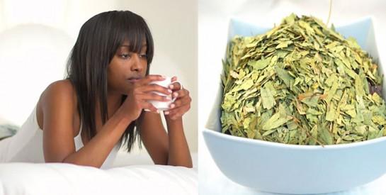 Les feuilles de Séné pour lutter contre la constipation?