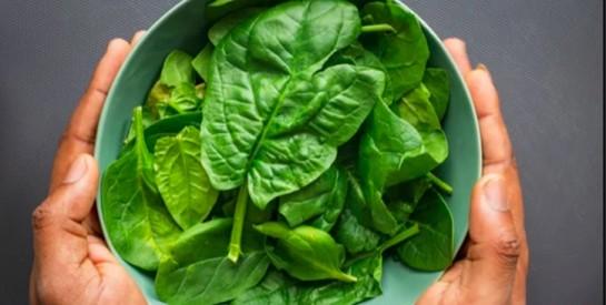 Les 6 aliments qui contiennent le plus de vitamine E