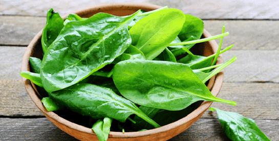 Les épinards : ces petites feuilles vertes riches en vitamines