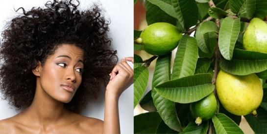 Des solutions naturelles contre la chute des cheveux