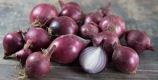 Les oignons rouges ont des propriétés puissantes de lutte contre le cancer