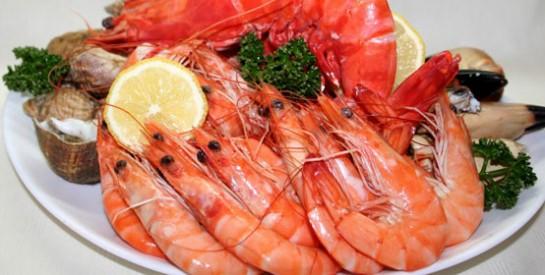 L'importance des fruits de mer dans nos assiettes