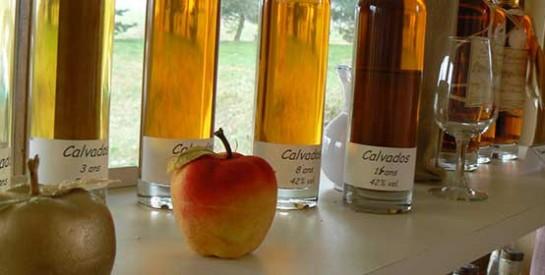 Perdre 1kg par semaine avec le vinaigre de cidre de pomme